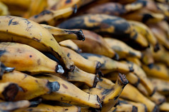 I can't stop photographing bananas (dogwelder) Tags: yellow bananas missiondistrict plantains shallowdof zurbulon