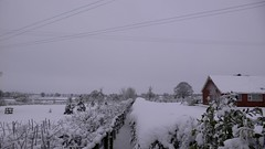 Snow Hits the UK (Phil Hartell) Tags: winter snow cold ice gloucestershire bigfreeze