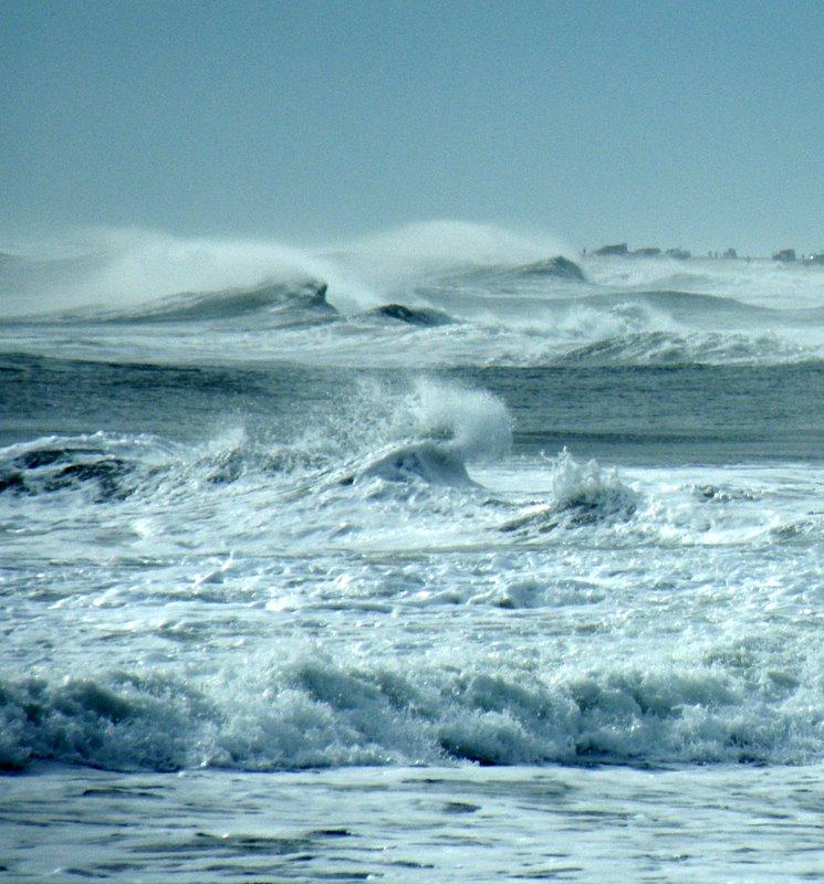 the oceans roar