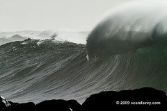 Waimea011110_0845 (Sean Davey Photography) Tags: color horizontal gold hawaii oahu northshore waimeabay goldenlight greenenergy seandavey oceanpower 011110 powerfulwaves surfnorthshore picturessurfers wavesenergy seawaveenergy oceanenergy surfbigwave bigwavesurfers biggestwaves jan10th2010