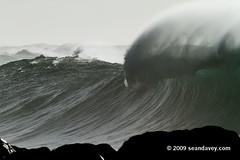 Waimea011110_0845 (Sean Davey Photography) Tags: color horizontal gold hawaii oahu northshore waimeabay goldenlight greenenergy seandavey oceanpower 011110 powerfulwaves surfnorthshore picturessurfers wavesenergy seawaveenergy oceanenergy surfbigwave bigwavesurfers biggestwaves jan10th2010
