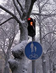 Rött ljus! Gäller det mig också?