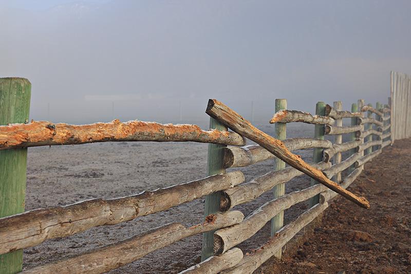 Fence (by KansasA)