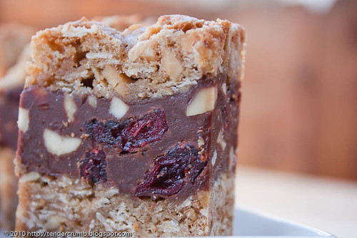 Tender Crumb Chocolate Oatmeal Almost Candy Bars Twd