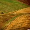 Rural Landscape (Osvaldo_Zoom) Tags: italy brown green colors rural landscape bravo fields marche macerata montesangiusto agriscape
