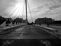 Samuel Beckett Bridge (Gerard Knight) Tags: bridge dublin water river liffey beckett samuel seahawk kartpostal