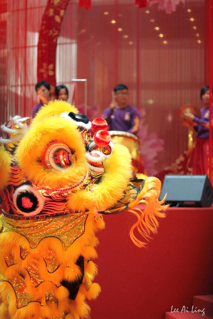 Lion dance 1
