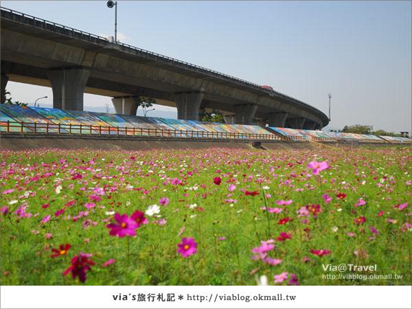 【2010春節旅遊】春節假期~南投市貓羅溪沙雕藝術節26