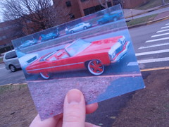 photography project (5)