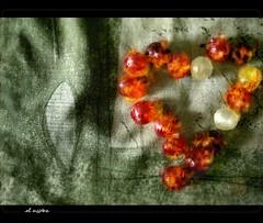 love is a candy which scorches < > el amor es un dulce que quema