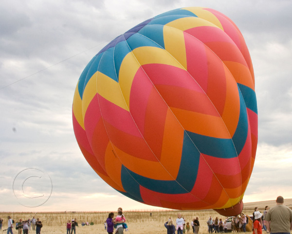 I Love...Balloons