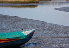 Maré vazia (antoninodias13) Tags: portugal água barco setúbal praias riosado azuis tróia comporta marébaixa arrozais abigfave museudoarroz theunforgettablepictures ilustrarportugal flickrestrellas