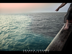 Two Colours (Shabbir Ferdous) Tags: blue sunset sea color colour water photographer shot natural song bangladesh bangladeshi ef70200mmf28lisusm thebayofbengal canoneos5dmarkii shabbirferdous swatchofnoground wwwshabbirferdouscom shabbirferdouscom