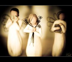 Faceless Angels (Wil_Bloodworth) Tags: macro closeup angel zeiss dallas nikon texa