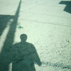 【写真】Shadow (MiniDigi)
