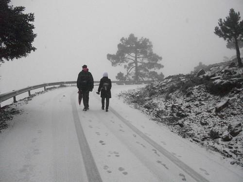 Los Reales nevado (5)