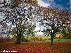 Secret Paradise (J E R R Y) Tags: paradise secret jerry puebla gml1274