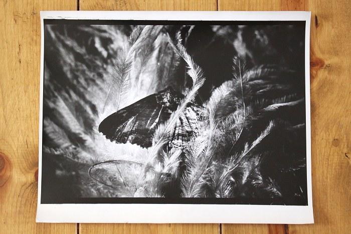 03-02-photos1