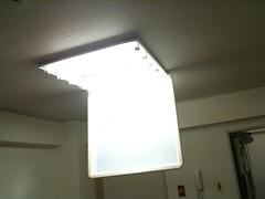 天井の蛍光灯の確認作業中