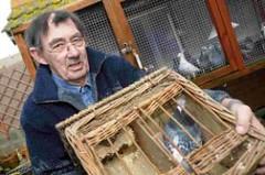 Memorial for Dickin Medal winning pigeons