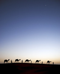 Alif Laila (1001 Nights). (Commoner28th) Tags: world blue pakistan sunset moon india classic silhouette night dark evening sand shadows village desert folk horizon azure culture caravan punjab laila 1001nights camels ahmed siluetas sindh indus jaisalmer thar rajasthan afterdark hyderbad ivc agha mirpurkhas alif naturesfinest scheherazade waseem cholistan jaisalmir umerkot supershot indusvalley rohi fineartphotos mywinners specialtouch indusvalleycivilization anawesomeshot theunforgettablepictures aliflaila commoner28th mygearandme mygearandmepremium mygearandmebronze mygearandmesilver mygearandmegold mygearandmeplatinum mygearandmediamond alaflaila
