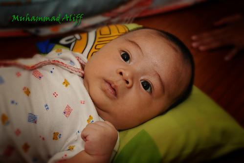 Aliff 3