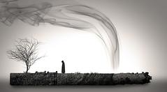 The life of a smoker (Abdulwahab Alasbahi) Tags: kuwait q8 kwt   vwc     asbahi