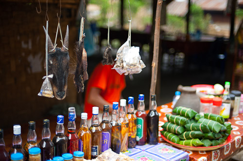 Jungle animals for sale at a roadside market in Pha Hom, north of Vang Vieng, Laos