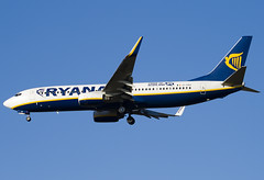 EI-DAO - 33550 - Ryanair - Boeing 737-8AS - Standsted - 071201 - Steven Gray - IMG_7188