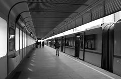 Come un pendolare dentro la sua stazione (&li) Tags: vienna wien city people urban glass architecture geotagged sterreich gente metro tram ticket scala stazione biglietto viaggio architettura citycentre citt vetro scalamobile struttura pendolare mezzoditrasporto