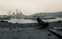 Landévennec (Philippe sergent) Tags: abandoned boat ship bretagne breizh colbert navire marinenationale landevennec aulne croiseurcolbert c611