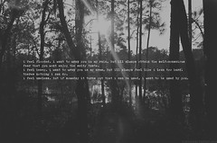 ifeelflooded (Cjsewerz) Tags: white black rain forest poetry you wrap cj sewers