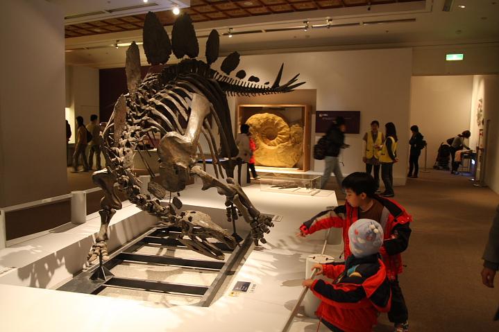 中正廟恐龍展000024