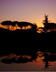 Sienna sunset from the train (Beaches Marley.....iPad art) Tags: italy sienna top20sunsetsofourhearts wworange