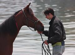 quando parlano i sensi (Beppe Modica) Tags: sea portrait cheval mare cavallo ritratto luce scattirubati canoneos450ditalia