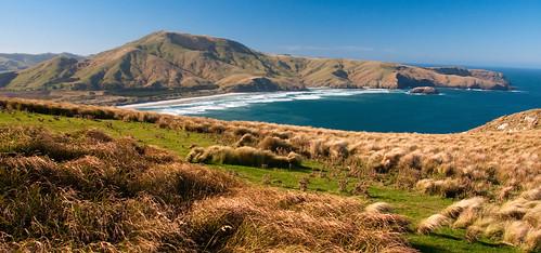 Otago Peninsula 14