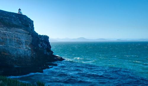 Otago Peninsula 17