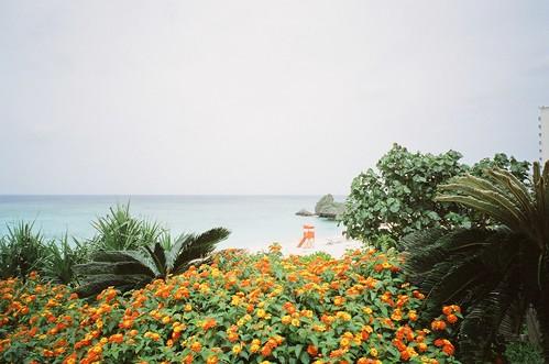 nilai beach