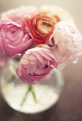 Happy weekend! (Karin A ~) Tags: pink light spring nikon bokeh ranunculus tgif 5014 d90