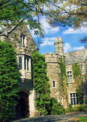 Castle Ringwood