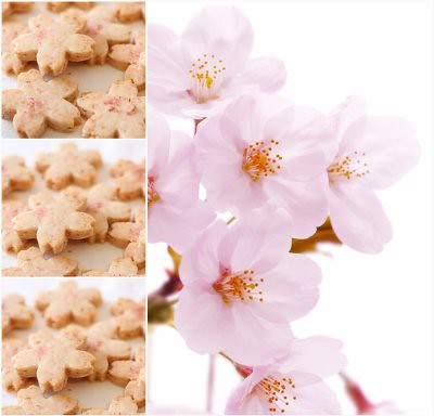 Sakura Cookie Collage 2