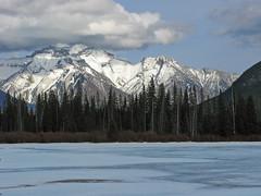 Mount Peechee (richardcjones) Tags: canada alberta banff rockymountains vermilionlakes fairholmerange mountpeechee