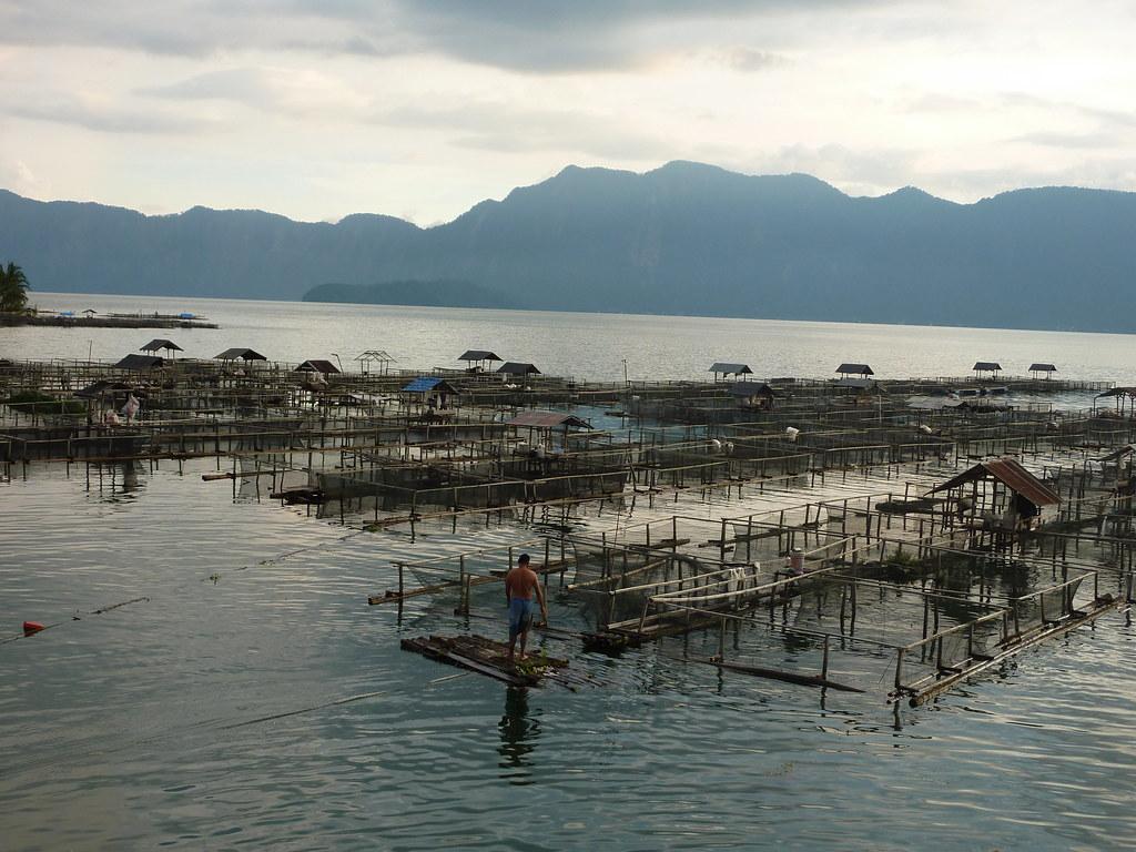 Sumatra-Lac Maninjau (177)