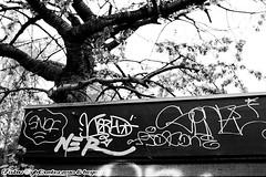 grit (fonzi74/gbCrates) Tags: street city urban streetart art copenhagen grit denmark graffiti town pieces tag graf arts n tags gritty gb spraypaint rough piece cph aerosol revolutionary frederiksberg nrrebro danmark emil alternative kbenhavn chr frederik grimey grimy tagz kbh frb streetarts nrrebronx hyerchristensen tagzstreetartstreetartstreetartsstreetartsgrimeygrimygrittygritroughgraffitigraftagtags fonzi74 gbcrates hyerchr frederikemilhyerchr