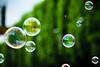 """Bubble the City!"" #144/365 (A. Aleksandravičius) Tags: city green colors oneaday nikon bubbles photoaday bubble 365 tamron lithuania pictureaday kaunas 70300 d60 lietuva tamron70300 project365 365days nikond60 bubbleday 144365 renginiai burbulai burbuliatorius ""bubblethecity"" burbuliatorius2010"