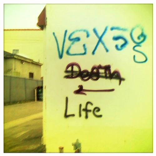 v13 life by Bridget B