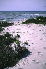 Beach Backkra in Ystad (Sknska Matupplevelser) Tags: ocean summer beach strand skne sand sweden sverige hav sommar sterlen ystad backkra footstepsinsand sknskamatupplevelser beachbackkrainystad backkrastrandiystad