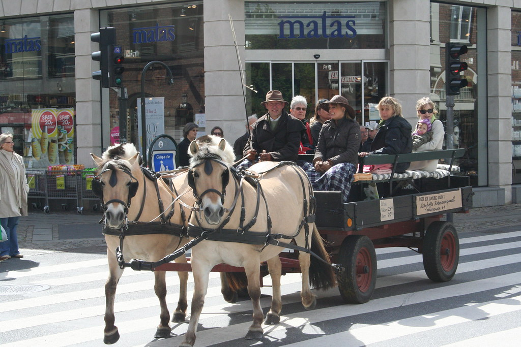 Hestekøretøj i Roskilde