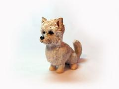 Pooka (DragonsAndBeasties) Tags: portrait dog pet cute puppy little gift etsy custom pomeranian yorky bg beastie beccagolins