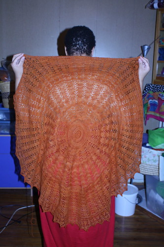 EZ 100th Anniversary Pi Shawl